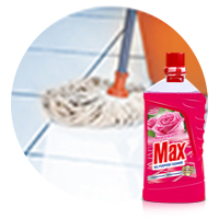 Max All Purpose Cleaner